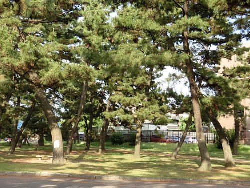 浜寺公園01